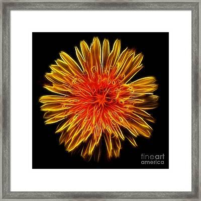 Electrified Dandelion Framed Print by Kaye Menner