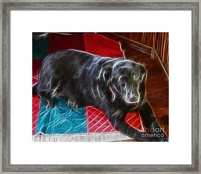 Electrostatic Dog And Blanket Framed Print by Barbara Griffin