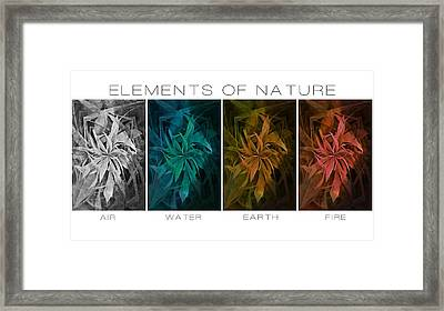 Elements Of Nature Framed Print by Marianna Mills