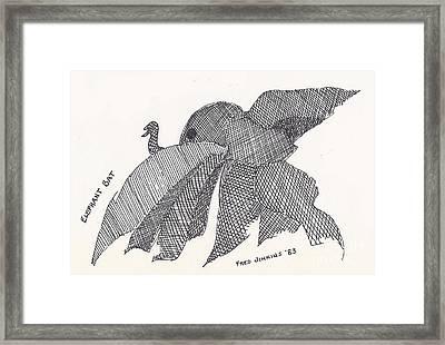 Elephant Bat Framed Print by Fred Jinkins
