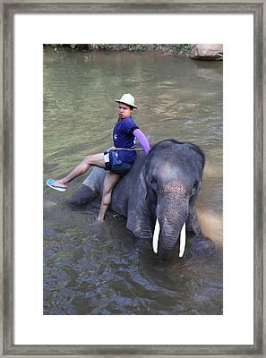 Elephant Baths - Maesa Elephant Camp - Chiang Mai Thailand - 011316 Framed Print by DC Photographer