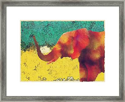 Elephant - Happened At The Zoo Framed Print by Jack Zulli