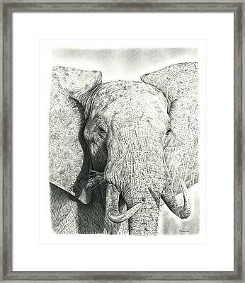 Elephant Framed Print by Remrov Vormer