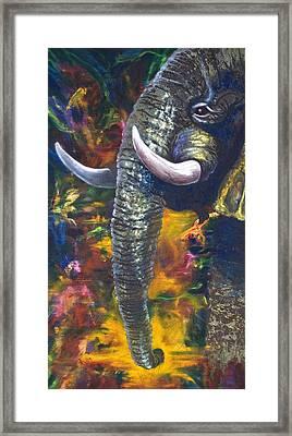 Elephant Framed Print by Kd Neeley