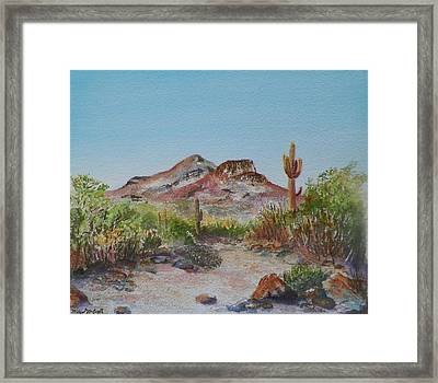 Elephant Mountain Framed Print by Michael McGrath