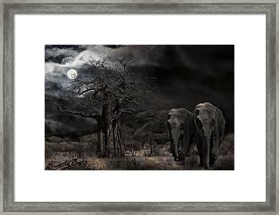 Elephants Of The Serengeti Framed Print by Daniel Hagerman