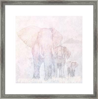 Elephants - Sketch Framed Print by John Edwards