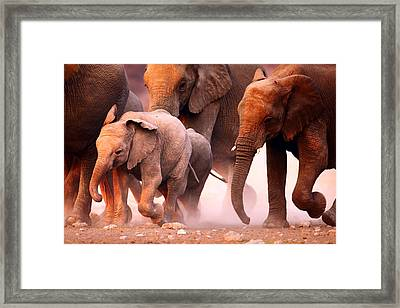 Elephants Stampede Framed Print by Johan Swanepoel