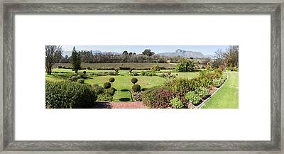 Elevated View Of A Vineyard Framed Print by Panoramic Images