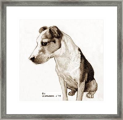 Eli Waits Framed Print by Lorraine Zaloom