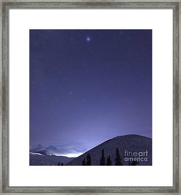 Elk In Paradise Framed Print by Dan Jurak