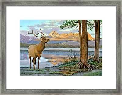 Elk In The Sawtooths Framed Print by Paul Krapf