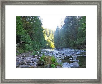 Elkhorn Framed Print by Linda Hutchins