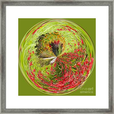 Emberglow Orb Framed Print by Anne Gilbert