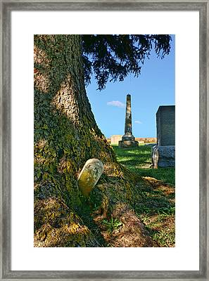 Embraced Framed Print by Nikolyn McDonald