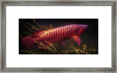Emerging Red Framed Print by Javier Lazo