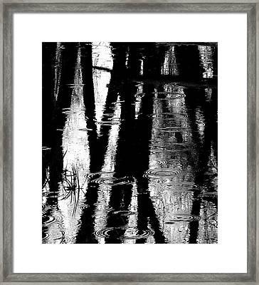 Emotional Crossing - Natures Tear Drops Framed Print by Steven Milner