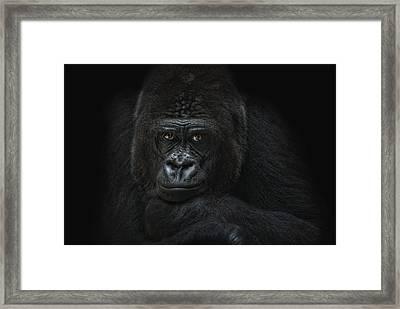 Emotive Robbery Framed Print by Joachim G Pinkawa