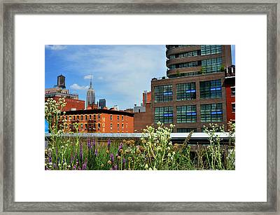 Empire State Building From The High Line Framed Print by Diane Lent