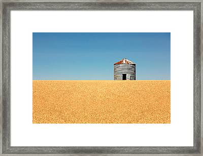 Empty Bin Framed Print by Todd Klassy