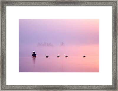 Empty Spaces 2 - Sunrise In The Mist Framed Print by Roeselien Raimond