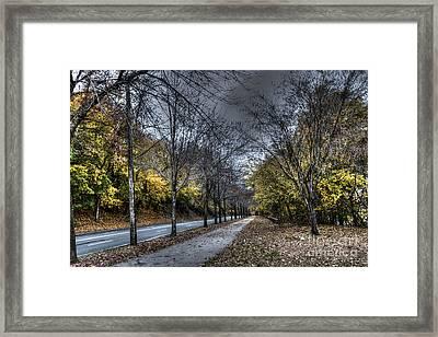 Empty Trail Framed Print by Mark Ayzenberg