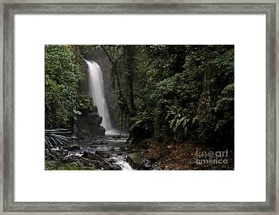 Encantada Waterfall Costa Rica Framed Print by Teresa Zieba