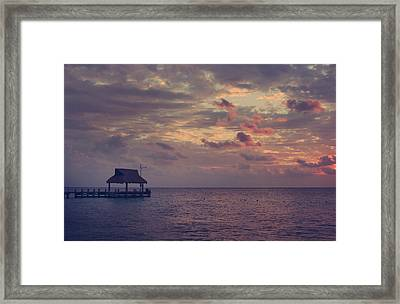 Enchanted Evening Framed Print by Laurie Search