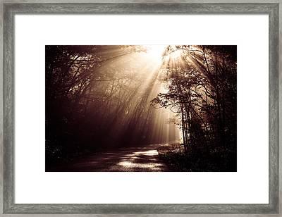 Enchanted Light Framed Print by Todd Klassy