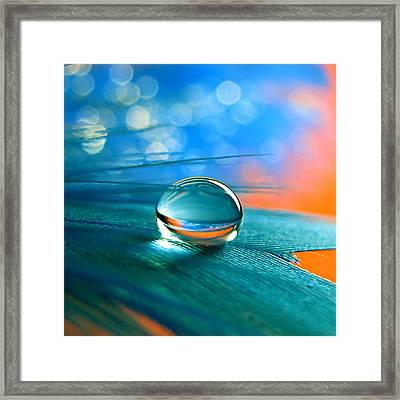 Enchanted Framed Print by Vesna Viden