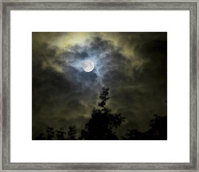 Energize Framed Print by Steven Poulton