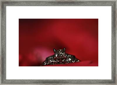 Engagement Ring On Rose Petals Framed Print by Dan Sproul