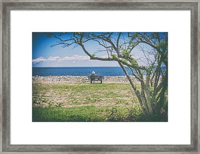 Enjoying The Day Framed Print by Karol Livote