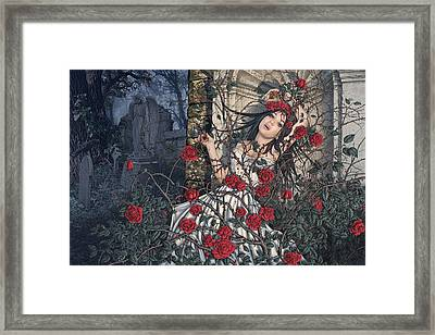 Entwined Framed Print by Steve Read