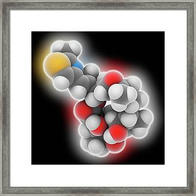 Epothilone B Drug Molecule Framed Print by Laguna Design