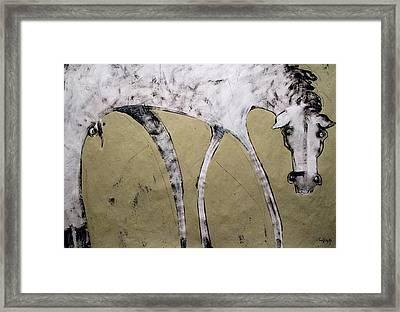 Equos Framed Print by Mark M  Mellon
