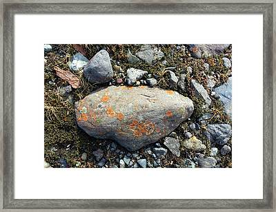 Erratic With Lichens Framed Print by Dr Juerg Alean