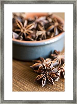 Essence Of Aniseed Framed Print by Anne Gilbert