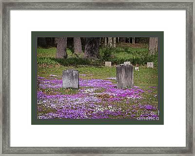 Eternal Beauty Framed Print by John Stephens