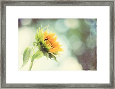 Eternal Optimist Framed Print by Amy Tyler