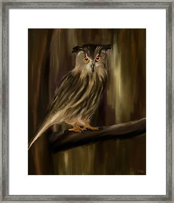 Eurasian Owl Look Framed Print by Lourry Legarde