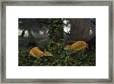 Eurohippus Prehistoric Mammals Framed Print by Walter Myers