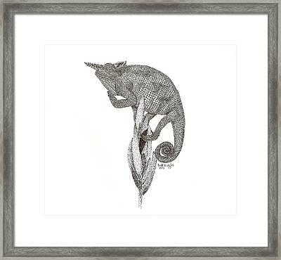 Evasive Manuevers Framed Print by Todd Hodgins