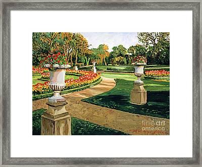 Evening Garden Framed Print by David Lloyd Glover