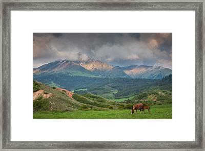 Evening Horses Framed Print by Konstantin Dikovsky