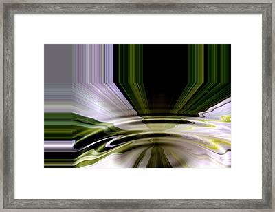 Evening Primrose Framed Print by Barbara Milton