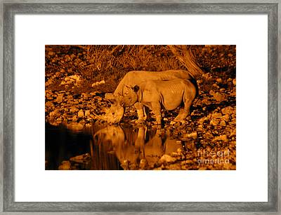 Evening Reflection Framed Print by Alison Kennedy-Benson