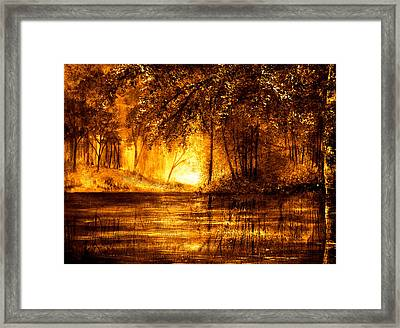 Evening Reflections Framed Print by Ann Marie Bone