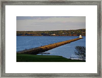 Evening Stroll Framed Print by Trish Hebendahl
