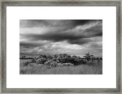 Everglades Storm Bw Framed Print by Rudy Umans